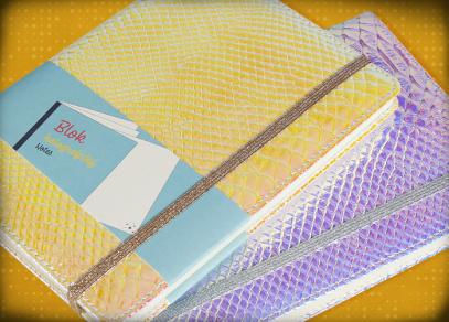 Imitace kůže a ochranná gumička na holografických diářích od Albi