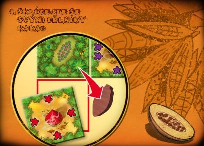 Cacao - Sklízejte se svými dělníky kakao...