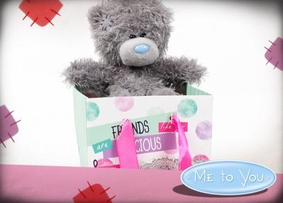Medvídka Me to You v taštičce a mnoho dalších variant plyšáků naleznete v našem e-shopu nebo v prodejnách Albi