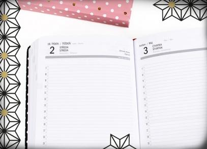 Denní kalendárium s hodinovým plánováním v diářích Albi