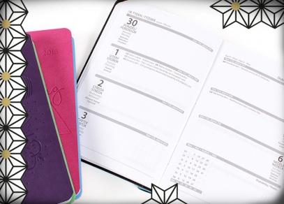 Týdenní plánování s diáři s propiskou od ALBI